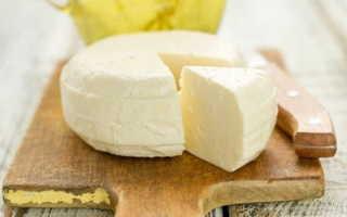 Домашний сыр из молока и кефира (13 фото): пошаговый рецепт создания мягкого продукта, как сделать