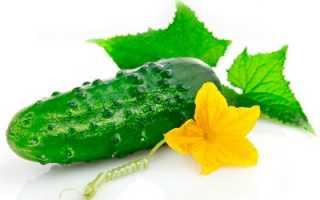 Огурцы при гастрите: можно или нет есть свежие огурцы и помидоры при повышенной кислотности
