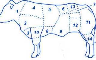 Часть говяжьей туши – оковалок: что это такое и что можно приготовить? ГОСТ на говядину, рецепты мясных блюд
