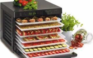 Сушеные овощи: рецепты блюд из вяленых плодов. Как засушить в домашних условиях на зиму овощи? Польза и вред