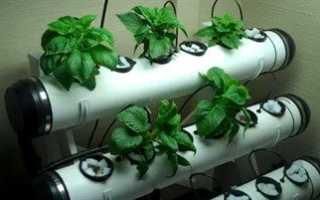 Оборудование для выращивания овощей гидропоникой: что это такое? Как сделать оборудование своими руками?