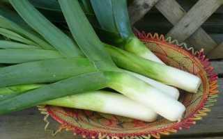 Какую часть лука-порея едят? Как можно использовать и как добавляют в пищу, применение зеленой части