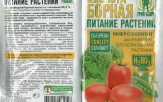 Борная кислота для огурцов и помидоров: опрыскивание и обработка овощей для завязи, применение для подкормки растений