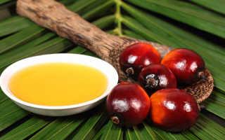 Пальмовое масло в детском питании: вред и польза, список смесей без ГМО и пальмового масла, советы доктора Комаровского