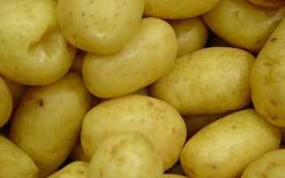 Лечение геморроя картофелем: как лечить картофельными свечами наружное заболевание в домашних условиях, отзывы