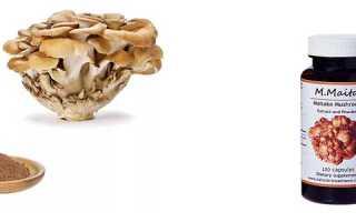 Мейтаке (гриб баран): полезные и лечебные свойства гриба, экстракт и применение