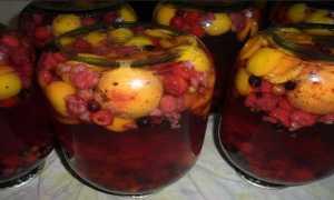 Компот «ассорти»: рецепты без стерилизации на зиму. Как варить компот из фруктов, болгарский и венгерский? Простые способы заготовки компота
