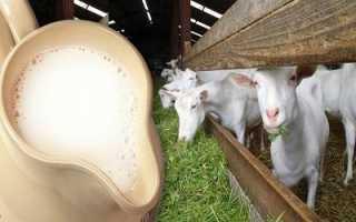 Какое молоко полезнее – козье или коровье? Чем отличаются, какое молоко жирнее и лучше, как