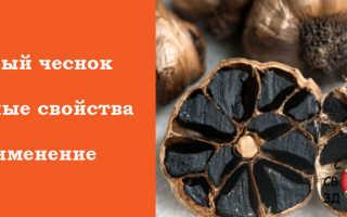 Чёрный чеснок: польза и вред для здоровья, как приготовить ферментированный овощ в домашних условиях