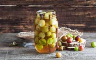 Приготовление маринованного крыжовника: рецепты приготовления заготовок на зиму, консервирование ягод с огурцами, отзывы