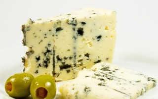 Сыр с плесенью (22 фото): название и виды продукта, польза и вред французского сыра, как