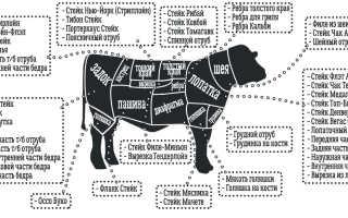 Говяжья диафрагма: что это такое и как приготовить мясо? Рецепты блюда из говядины с тонкой и толстой перегородкой