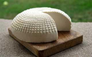 Сыр Гауда (22 фото): описание и рецепт приготовления в домашних условиях, калорийность и БЖУ продукта,