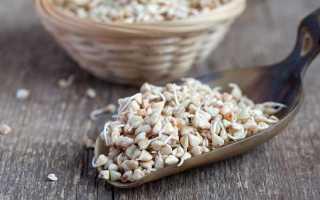 Пророщенная зеленая гречка (14 фото): калорийность, польза и вред крупы для проращивания, отзывы