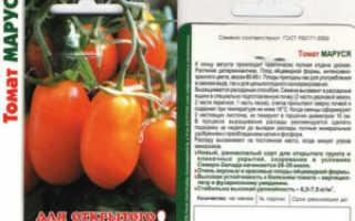 Томат маруся (31 фото): характеристика и описание сорта помидоров, высота куста и урожайность, отзывы