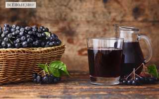 Компот из черноплодной рябины: как сварить из замороженной ягоды, яблок и черной смородины – рецепты, чем полезен для грудничков