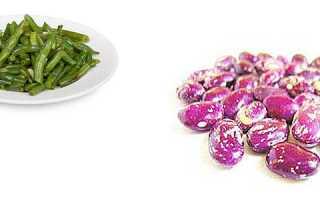 Калорийность фасоли: в вареном и консервированном виде – сколько Ккал на 100 грамм, особенности зеленой