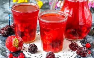 Морс из ягод: рецепт ягодного напитка из свежих плодов, как приготовить морс из лесных ягод дома