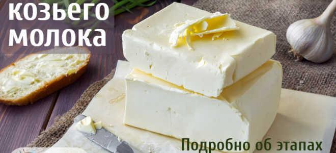 Как сделать сливки? Рецепт приготовления сливок из козьего молока в домашних условиях