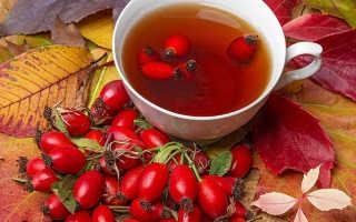 Польза и вред чая с шиповником: лечебные свойства и противопоказания, как правильно заваривать