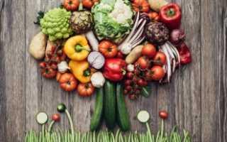 Огурцы при панкреатите: можно или нет есть свежие овощи при болезни поджелудочной железы, как правильно их употреблять