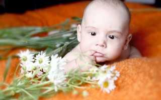 Ромашковый чай для грудничка: детский напиток с ромашкой, можно ли давать грудничку, польза и вред для новорожденных