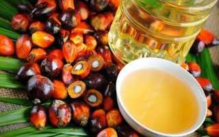 Из чего производят пальмовое масло? 12 фото Технология изготовления и применение масла