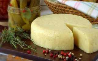 Сыр из козьего творога в домашних условиях: как сделать плавленый сыр, рецепты приготовления из молока