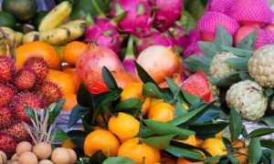 Свойства и особенности употребления экзотических фруктов: польза и сезон созревания
