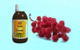 Из чего делают касторовое масло (5 фото): из какого растения получают масло и чем оно полезно