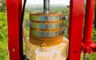 Нерафинированное горчичное масло: польза и вред. Можно ли жарить на горчичном масле первого холодного отжима?