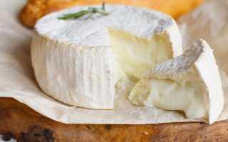 Жареный Камамбер: рецепты жарки сыра с панировкой и без, как приготовить его целиком в сковороде