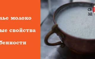 Кобылье молоко: как называется лошадиное молоко, польза и вред напитка, свойства и состав продукта лактации кобылиц