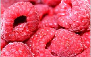 Заморозка овощей на зиму в домашних условиях (15 фото): какие из них можно замораживать в