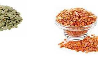 Калорийность чечевицы: содержание БЖУ на 100 грамм. Сколько калорий, белков и углеводов в оранжевой и