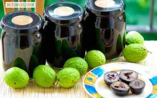 Грецкий орех: полезные и лечебные свойства, вред, применение, настойки и бальзам