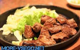 Жареная свинина на сковороде (40 фото): как вкусно и быстро приготовить по рецепту блюдо из мяса кусочками?