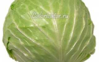 Калорийность капусты: химический состав свежей белокочанной и сколько калорий, БЖУ в 100 граммах, энергетическая ценность молодого и солёного овоща