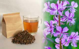Иван-чай при беременности: можно ли пить беременным на ранних сроках от отеков, противопоказания и польза напитка