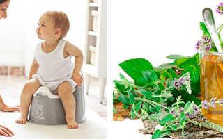 Слабительный чай: сенна от запора для детей и взрослых, напиток с послабляющим эффектом во время беременности, отзывы