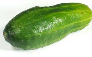 Кефир с огурцом (48 фото): употребление продуктов с зеленью для похудения, кефирно-огуречная диета и разгрузочный