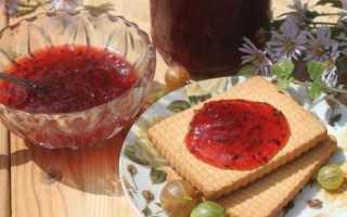 Конфитюр из крыжовника (14 фото): простые рецепты приготовления десерта на зиму