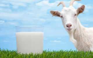 Можно ли молоко при грудном вскармливании? 17 фото Можно ли кормящей маме пить козье и