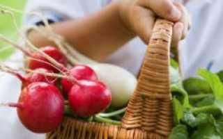 Можно ли есть редис при грудном вскармливании? Как употреблять кормящей маме при ГВ