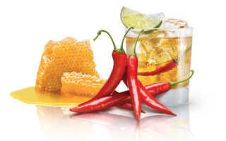 Водка с медом: рецепт компресса с перцем и лимоном от простуды, польза и вред