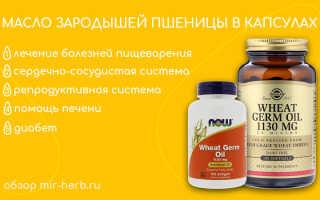 Масло зародышей пшеницы: свойства и применение косметического средства из проросших ростков, польза масла в капсулах, отзывы