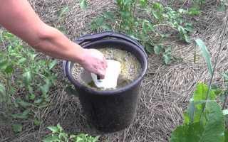Подкормка помидоров йодом: процесс полива томатов, как удобрять и опрыскивать в теплице раствором с молоком