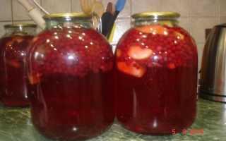 Компот из брусники на зиму: рецепт из яблок и груш с брусникой. Как приготовить брусничный