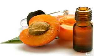 Абрикосовое масло: свойства и инструкция по применению продукта из косточек для загара, как капать в нос, отзывы
