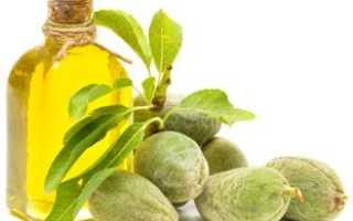 Оливковое масло (93 фото): польза и вред, как правильно выбрать